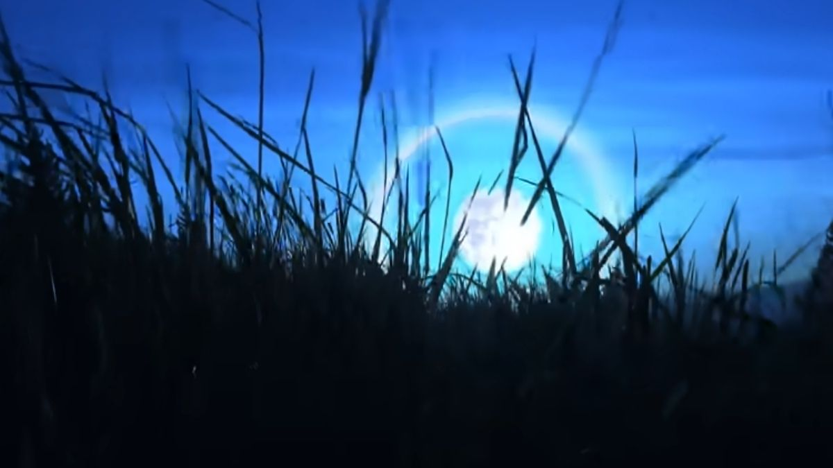 You are currently viewing Halo Around The Moon: Biblical Meaning [Explained]